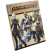 Pathfinder Advanced GM Screen (P2)