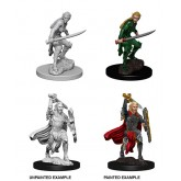 D&D Nolzur&#39s Marvelous Miniatures: Female Elf Fighter